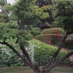 Exhibition with Japanese Paintings - Castle Gardens Arcen - The Netherlands - 2017
