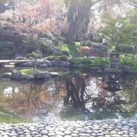 Kyoto Garden2