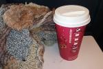 Starbucks - Decaf Cinnamon Latte