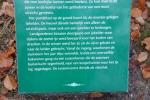 Icehouse - Palace Soestdijk - 1 Dec. 2013