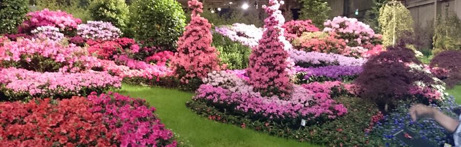 Floralien - Den Bosch - 18 May 2014